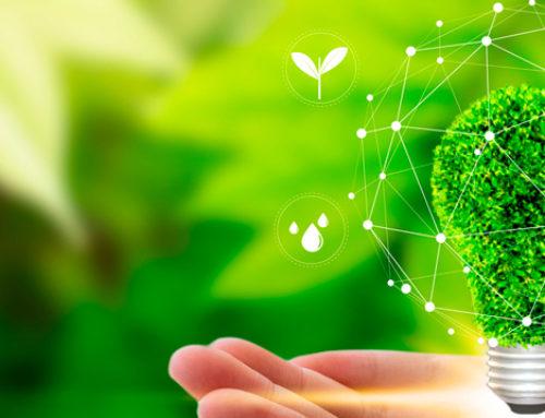 Os impactos ambientais da energia solar